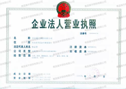 营业执照 (2)